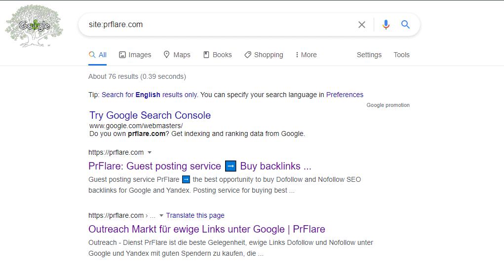 Jak sprawdzić, czy strona została zaindeksowana przez Googleboty?